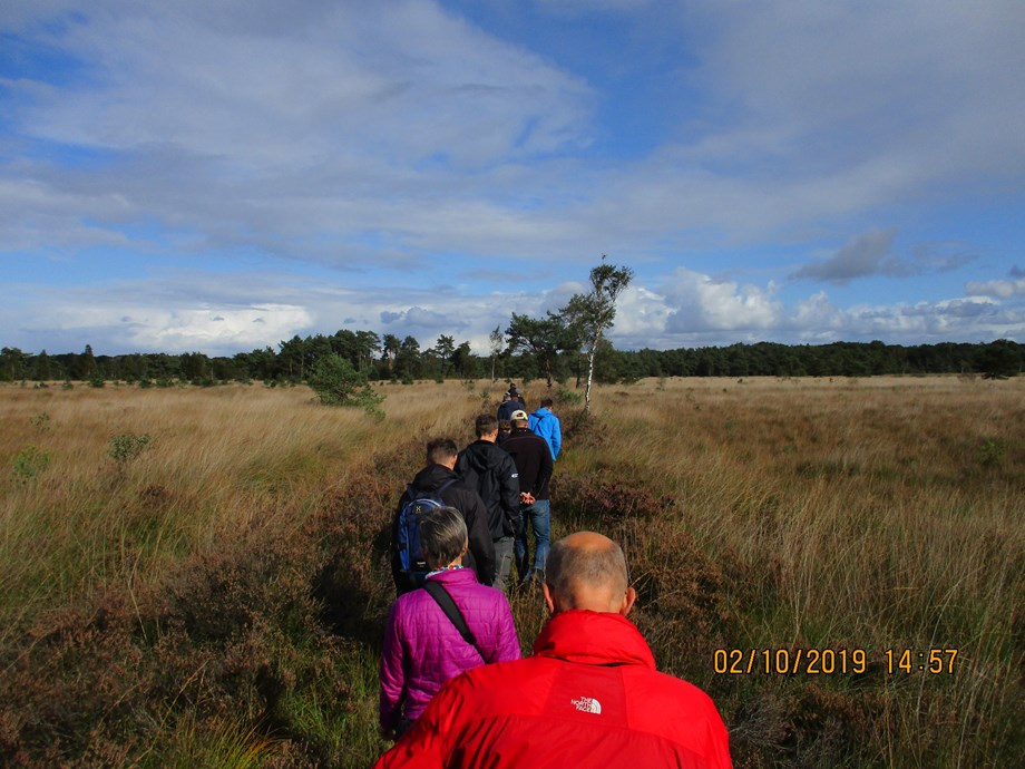Line of people walking into a bog landscape
