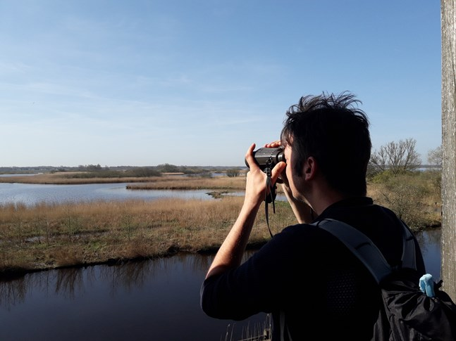 Bird spotting on Zuidlaardermeer